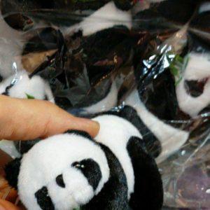 فروش عمده اسباب بازی عروسک خرس پاندا و پسرتپل