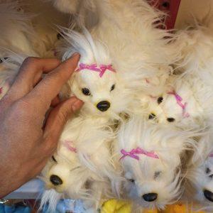 پخش عمده اسباب بازی های جذاب عروسک سگ پشمالو و لاک پشت